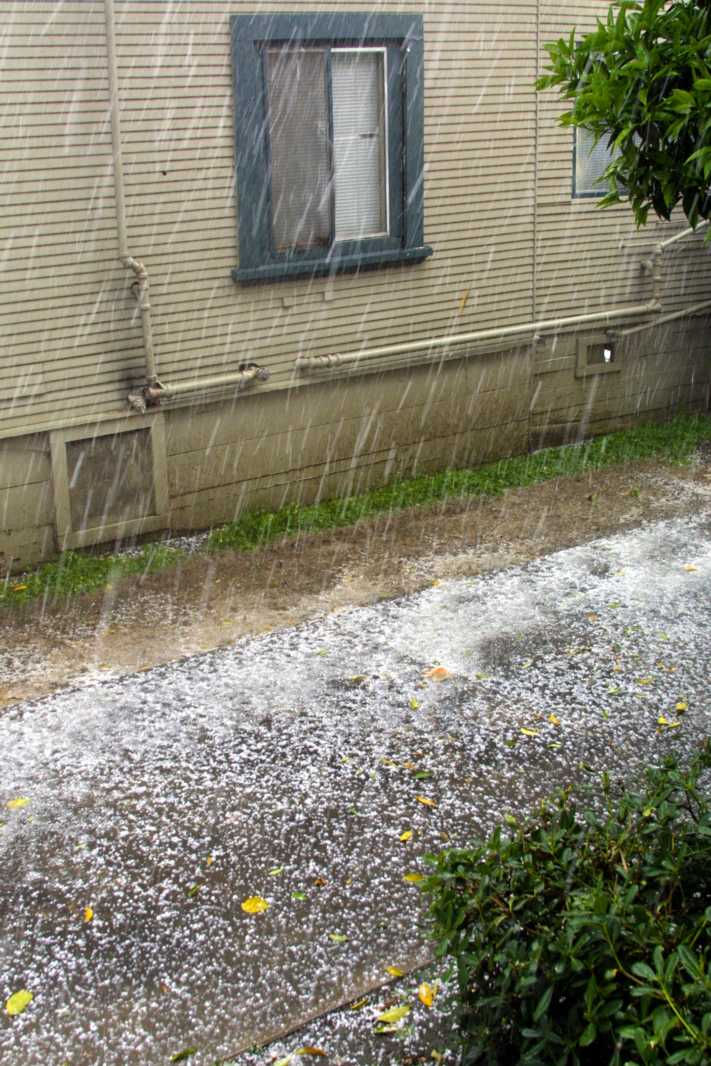 siding hail repair denver